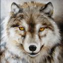 WOLF AMBER EYES (thumbnail)