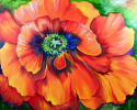 Painting--Oil-AbstractBRILLIANT POPPY