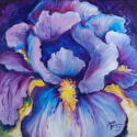 COLOR of LOVE PURPLE IRIS ABSTRACT (thumbnail)