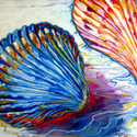 SEASHELLS ABSTRACT 24 (thumbnail)