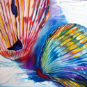 SEASHELL ABSTRACT II 24x24 ORIGINAL OIL PAINTING (thumbnail)