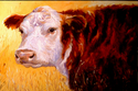 Painting--Oil-AnimalsCOW