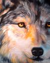 Mystic Wolf (thumbnail)