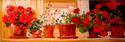 Painting--Oil-FloralFLOWER POTS