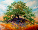 OLD OAK TREE (thumbnail)