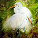 WHITE EGRETS LANDSCAPE WILDLIFE BIRDS OF LOUISIANA ORIGINAL OIL PAINTING 30x30 by MARCIA BALDWIN (thumbnail)