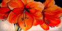 Painting--Oil-FloralAMARYLLIS 06