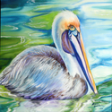 BROWN PELICAN of LOUISIANA (thumbnail)