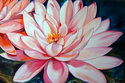 Painting--Oil-FloralPINK LILY