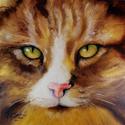 AMBER EYES SWEET KITTY (thumbnail)