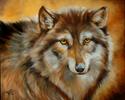 Painting--Oil-WildlifeWOLF IN WINTER