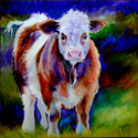 CURLY COW (thumbnail)