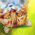SWEET KITTY ~ WHAT'S UP ? ~ Original Oil Painting 12 x 12 by Marcia Baldwin (thumbnail)