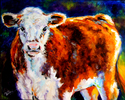 Painting--Oil-AnimalsCALF