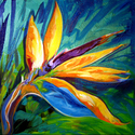 BIRD of PARADISE by M BALDWIN (thumbnail)