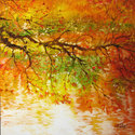 AUTUMN BRANCH LAKESHORE (thumbnail)