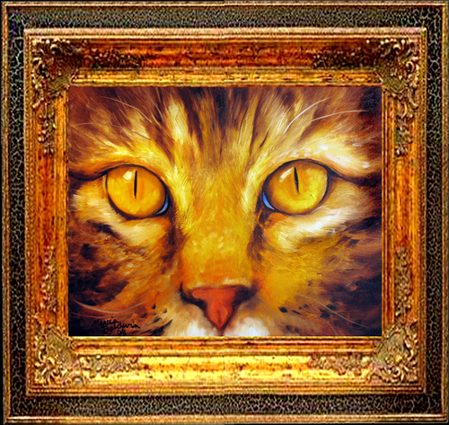 TABBY FRIEND ~ OIL ~ 14 X 11 (large view)
