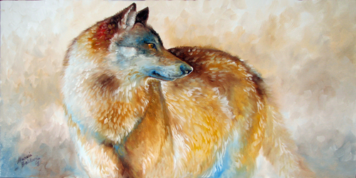 LONE WOLF 36 ~ ORIGINAL OIL by M BALDWIN (large view)