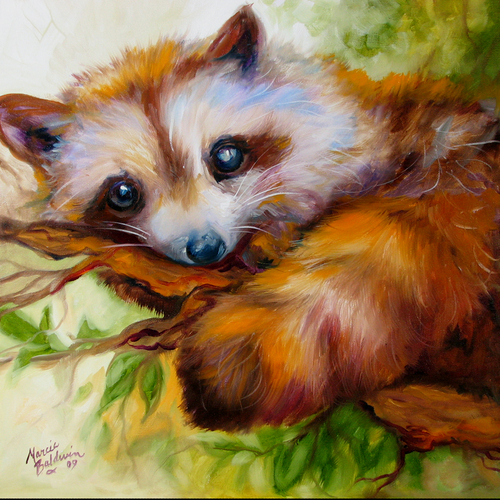 Painting--Oil-AnimalsRACOON EYES by M BALDWIN