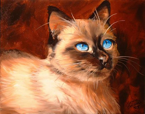 Sweet Kitty Siamese II (large view)