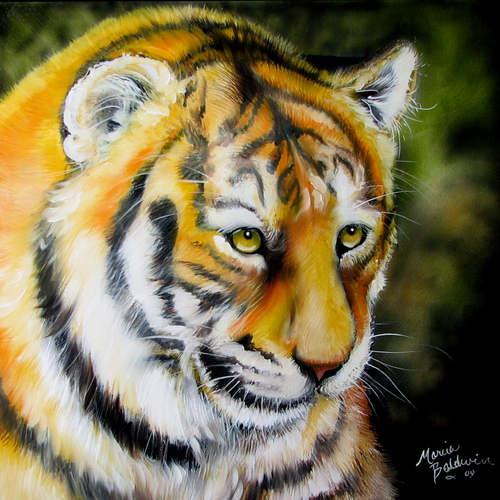 Painting--Oil-AnimalsTIGER CUB by M BALDWIN ~ WILDLIFE ART
