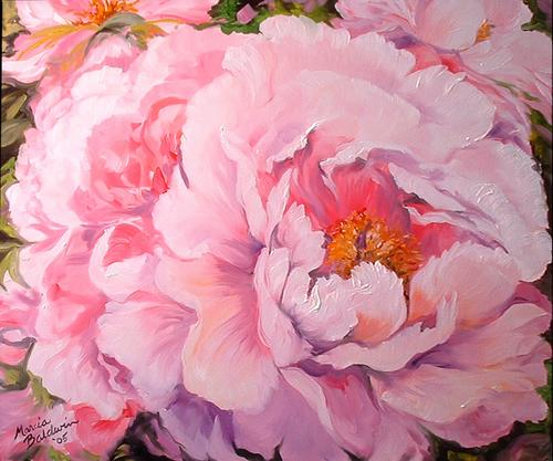 PINK PEONY (large view)