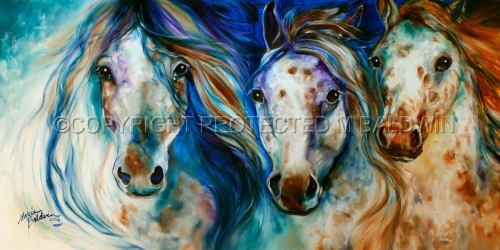 3 WILD APPALOOSA HORSES (large view)