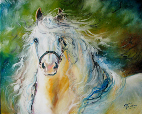 WHITE CLOUD the ANDALUSIAN STALLION by M BALDWIN (large view)