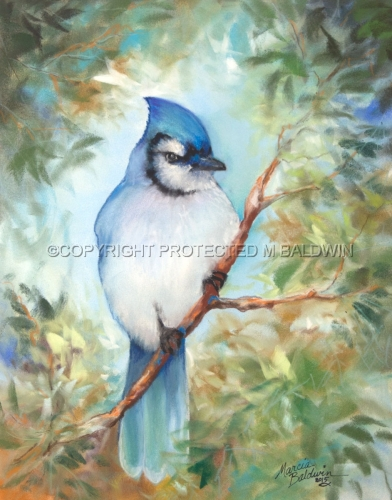 BLUE JAY PASTEL (large view)