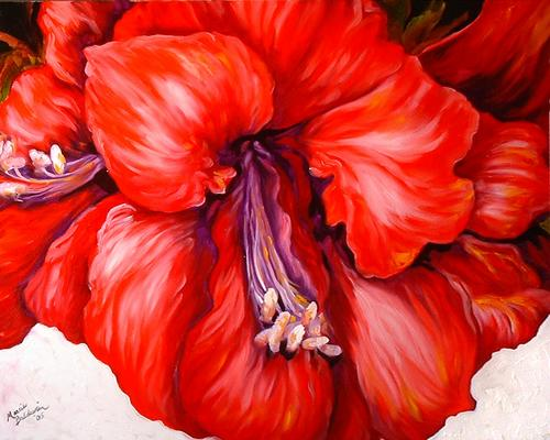 AMARYLLIS (large view)