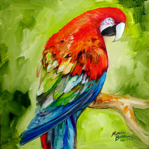 MACAW TROPICAL BIRD ORIGINAL OIL PAINTING 16 X 16 by M BALDWIN (large view)