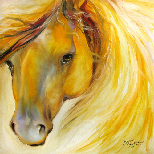 GOLDEN GLORY GYPSY VANNER (large view)