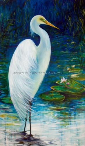 GREAT WHITE EGRET 6036 (large view)