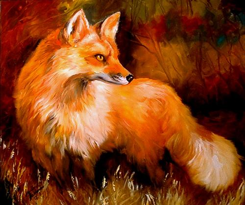 Red Fox Sly (large view)