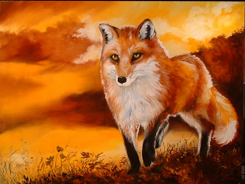 RED FOX SUNSET (large view)