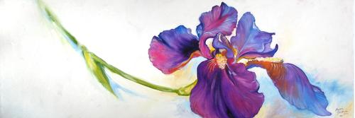 Freshly Picked Purple Iris