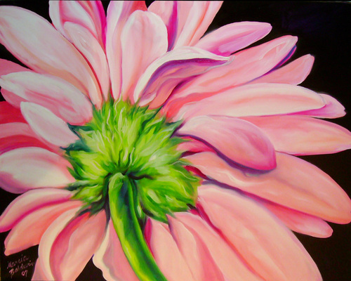 Pink Gerbera Daisy (large view)