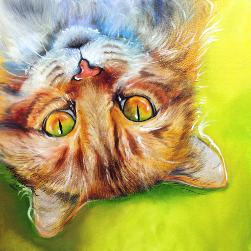 SWEET KITTY ~ WHAT'S UP ? ~ Original Oil Painting 12 x 12 by Marcia Baldwin (large view)
