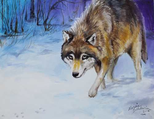 WOLF HUNTING 18x14 ORIGINAL OIL PAINTING COMMISSIONED ARTIST MARCIA BALDWIN (large view)