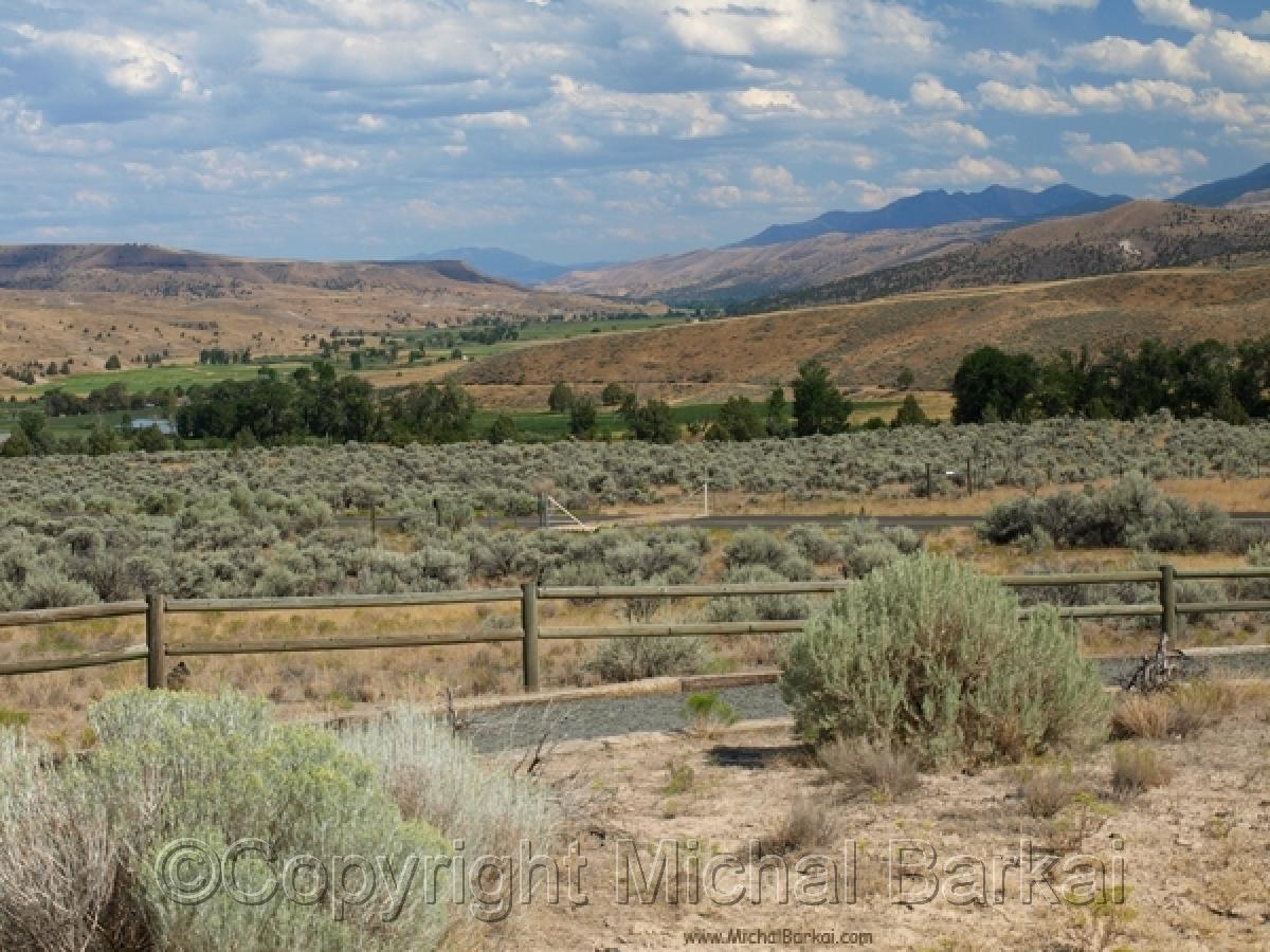 Desert Farmland (large view)