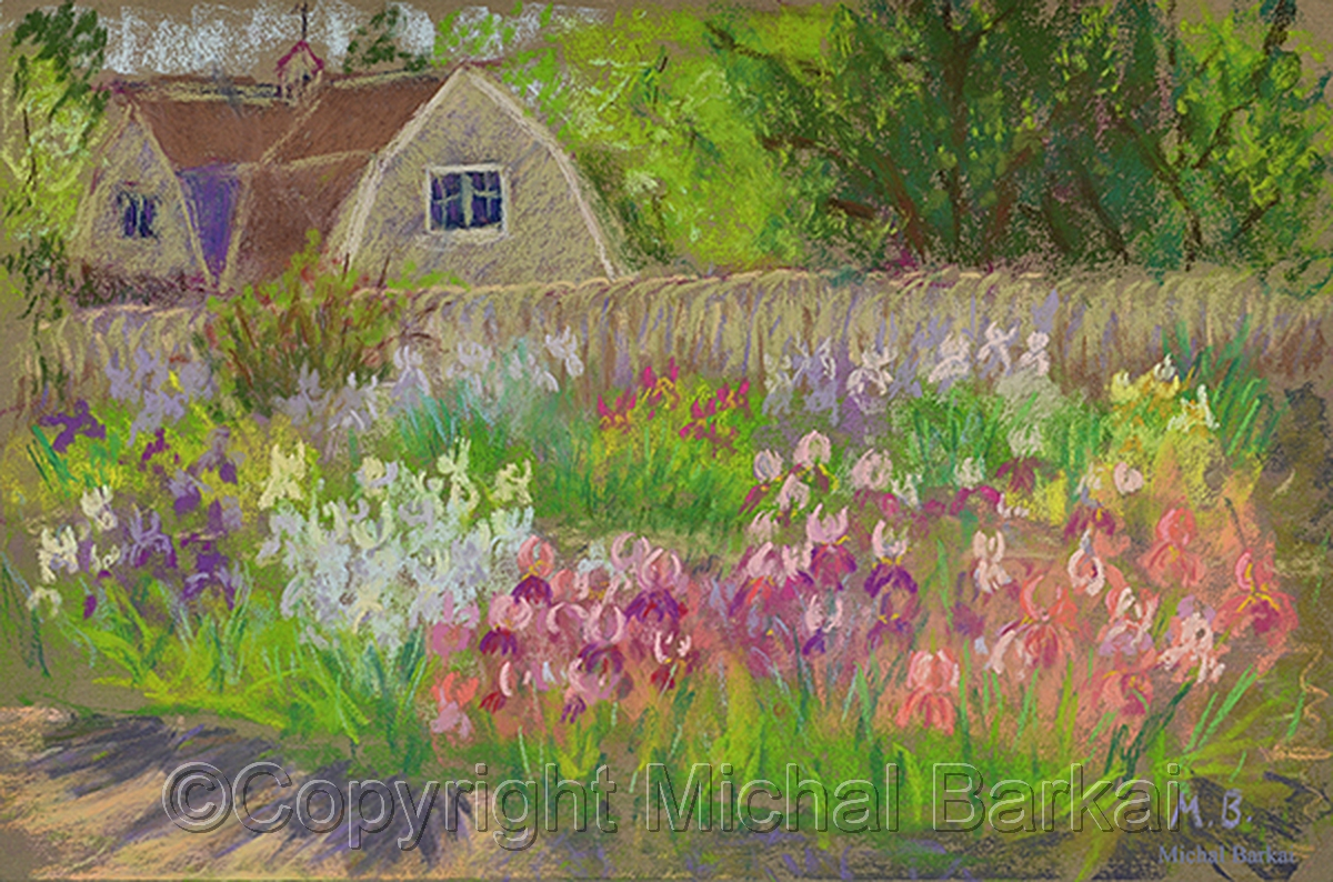 Cottage and Iris Garden (large view)