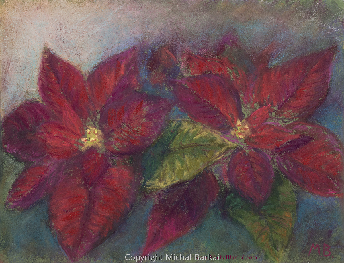 Poinsettia (large view)