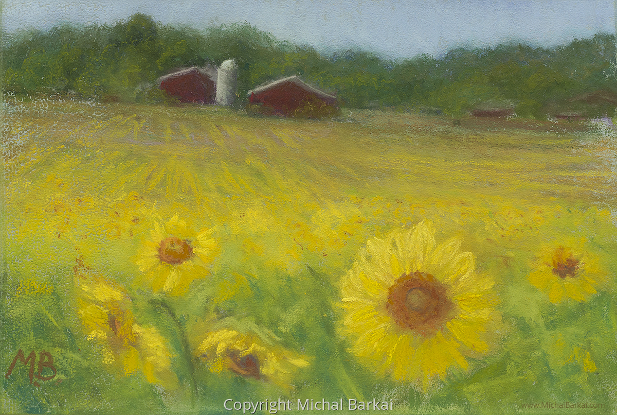 Sunflower Field, I (large view)