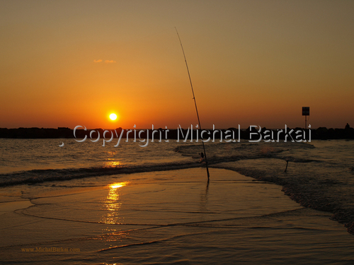 Tel Aviv Sunset - Fishing Rod (large view)