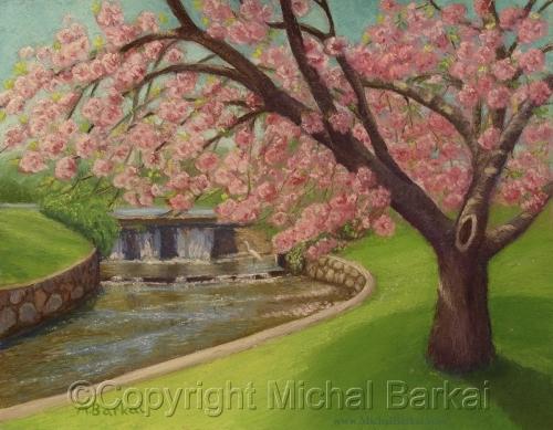 Verona Cherries and Waterfall   [+]
