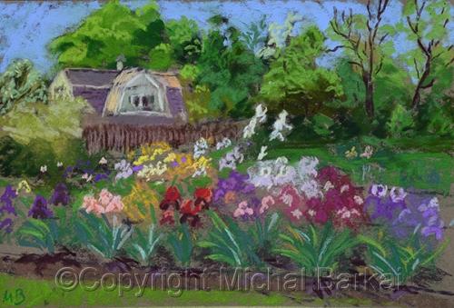 Morning at the Iris Garden