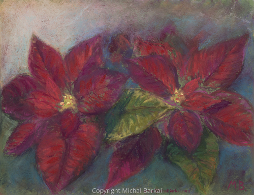 Poinsettia by Michal Barkai Art