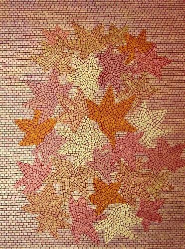 Maple Leaves by Mariana Barnes, PhD
