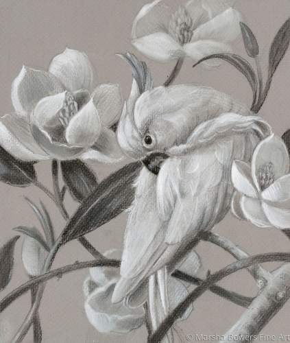 Parrot With Magnolias Tonal Values
