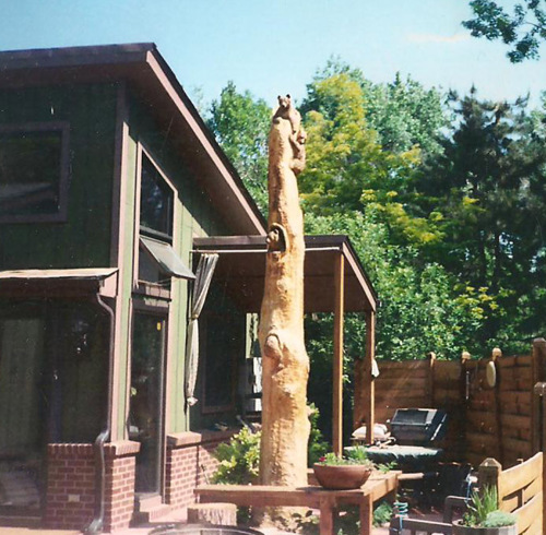 Bear Cub Tree Carving (large view)